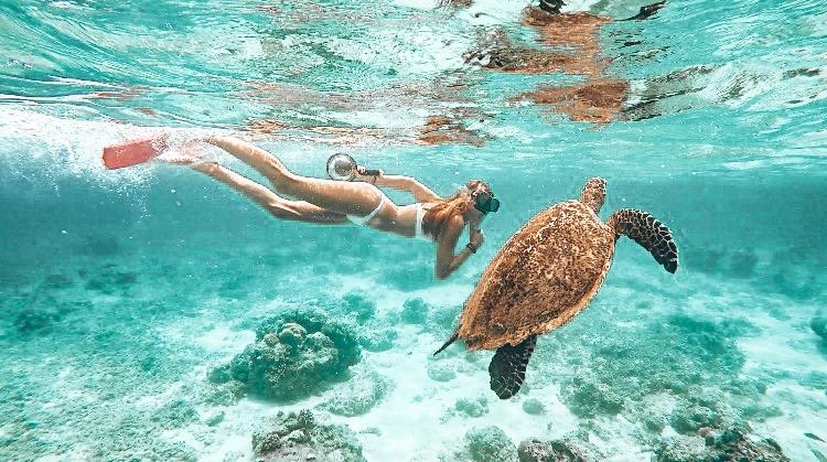 Snorkeling at Gili Meno
